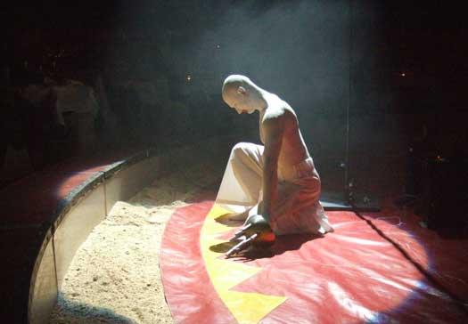 Bilder von der Circus Night 2007: Showprogramm
