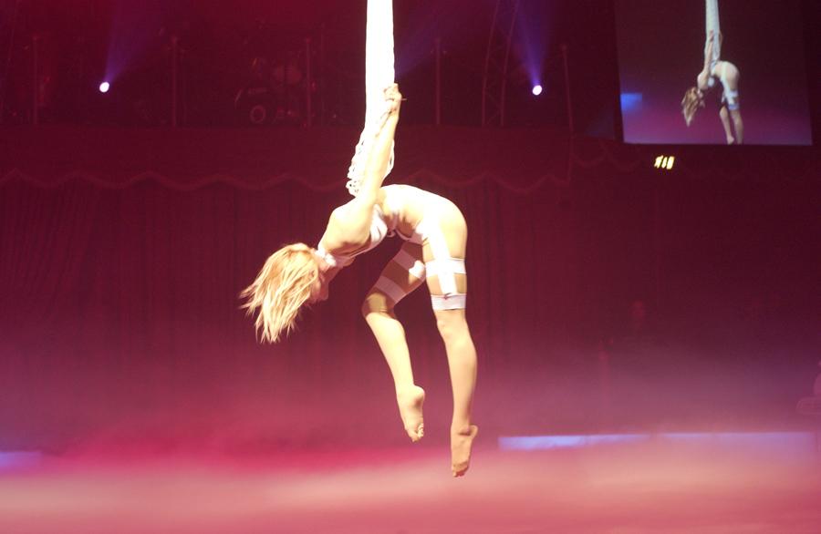 Bilder von der Circus Night 2008: Europapark